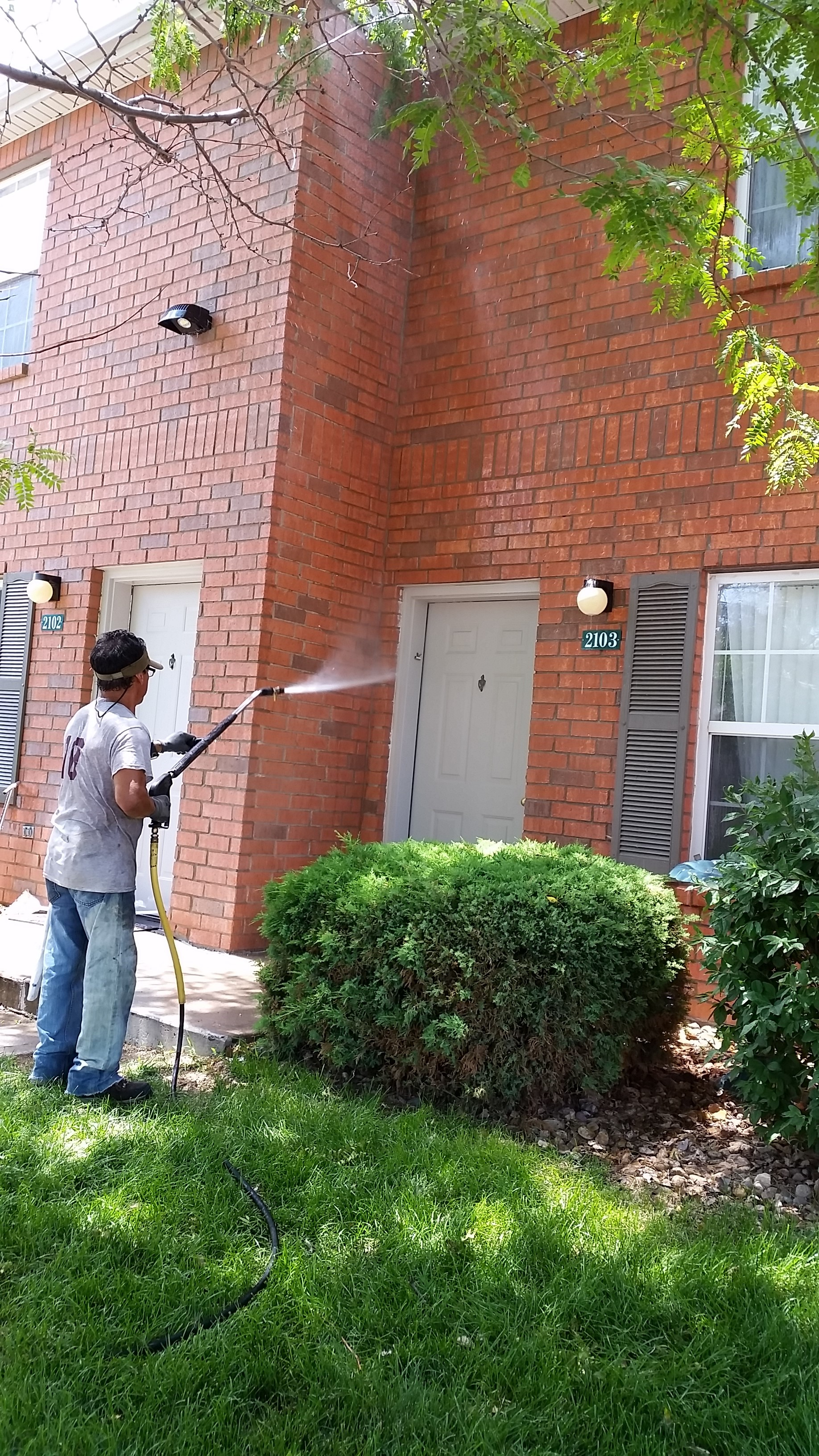 Exterior House Washing Fort Collins, Loveland, Windsor, Greeley