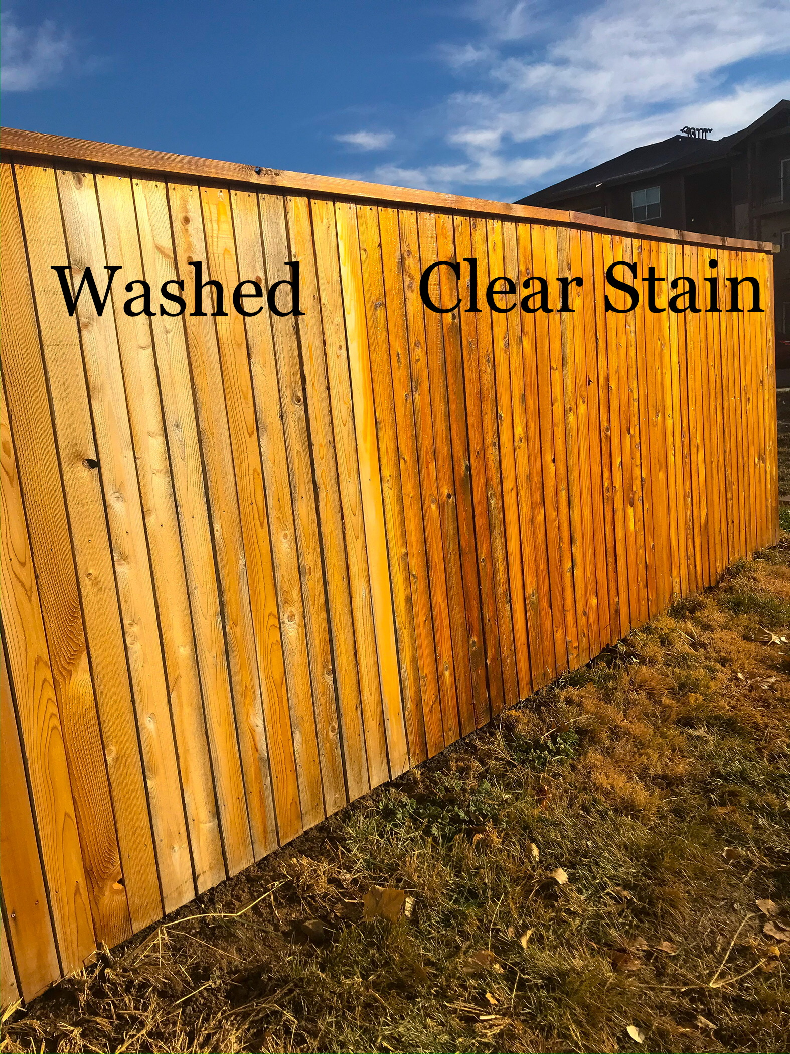 Fence & Deck Staining/Painting